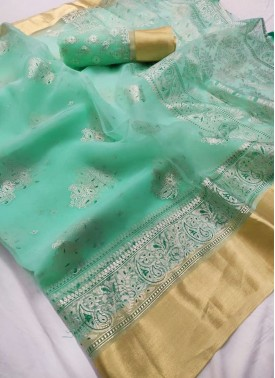 Beautiful Organza Saree in Pastel Shade and Foil P