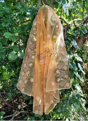 Lovely Peach Organza Dupatta In Embroidery Work