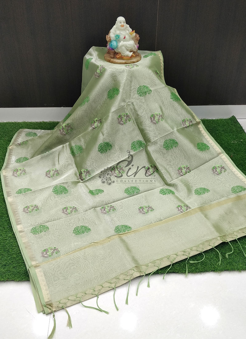 Lovely Tissue Organza Saree in Embroidery Work
