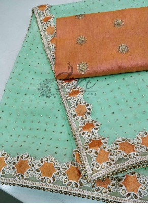 Pastel Green Chiffon Saree in Mukesh Work with Designer Borders