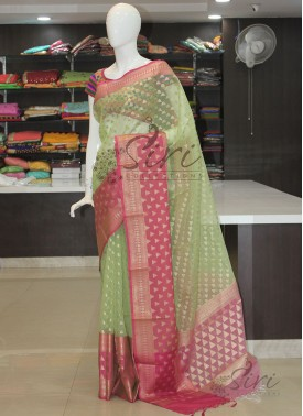 Pista Green Organza Saree in Rich Borders